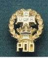 10_Past_District_Deputy_Pin_sm.jpg